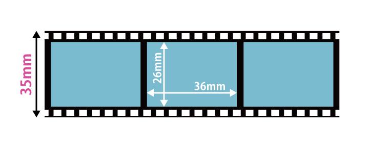 フィルムサイズ